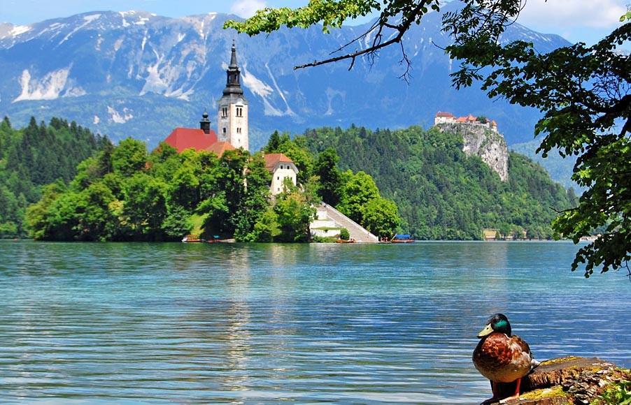 Roteiro e dicas de 4 dias pela Eslovénia – Ljublijana, lago Bled, lago Bohinj, Triglav…